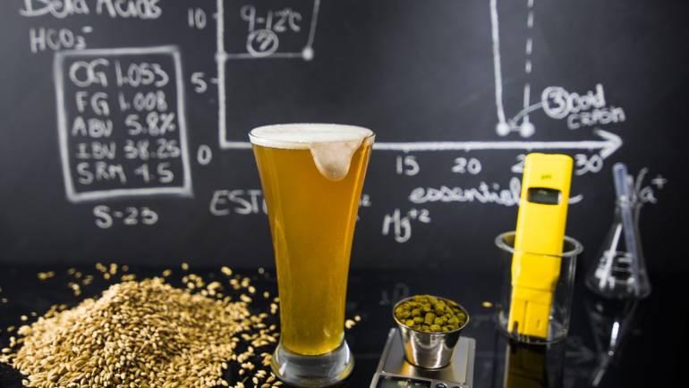 Новое пиво без хмеля