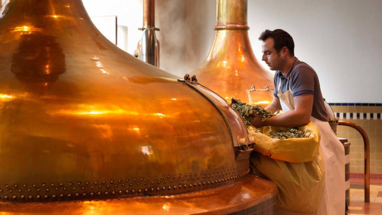 Бельгийские пивовары приостанавливают работу