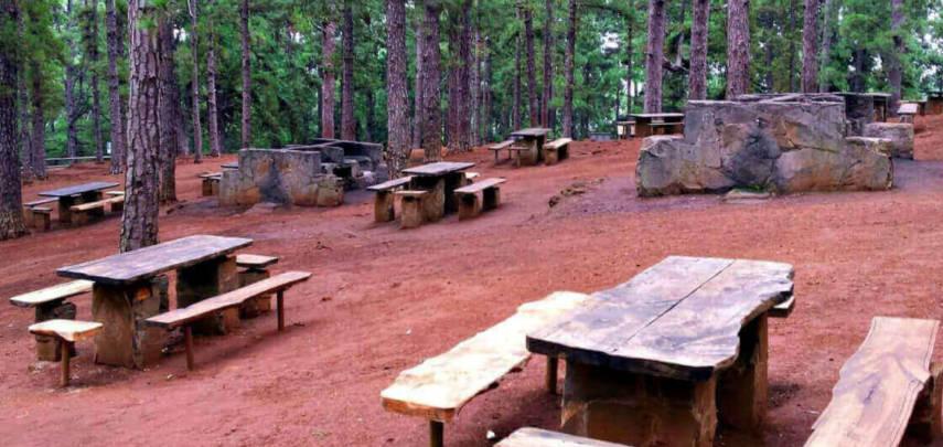 Пивоварня открыла парк на техасском ранчо
