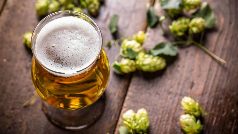 Как пивовары создают яркий вкус пива