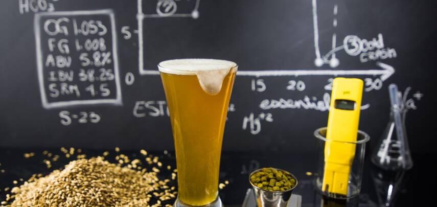 Химики нашли в пиве более 100 тысяч веществ